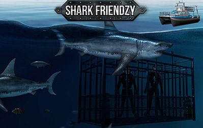 Shark Friendzy