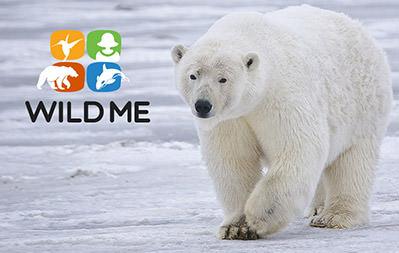 Wild Me Facebook App