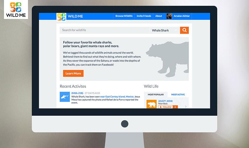 Animal Social Network
