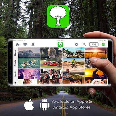 Tree Media Feed Mobile App